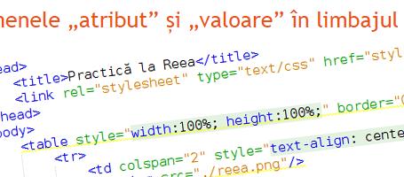 """Practica la Reea - Termenele """"atribut"""" și """"valoare"""" în limbajul HTML"""