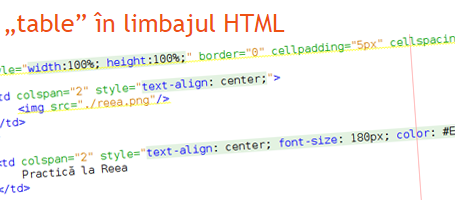 Practica la Reea - Tag table in limbajul HTML
